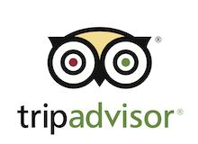 TripAdvisorVerticalLogo_220