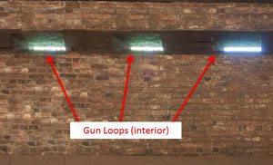 Gun Loops